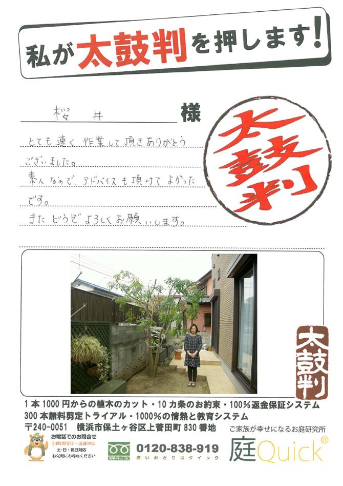 sakurai_mt.jpg