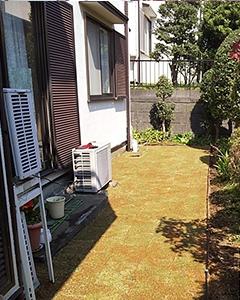 植栽剪定と芝張り後